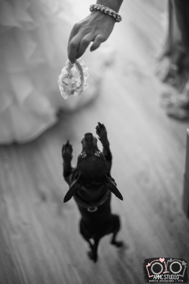 fotograf-szczecin-reportaz_slubny-Sylwia_Maciek-0019